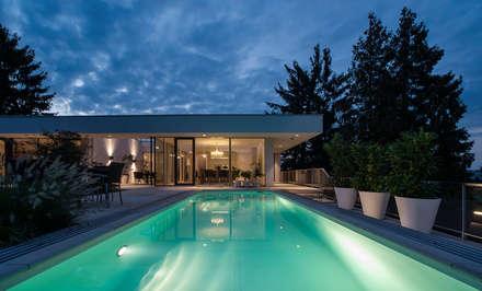 Atriumhaus in Wien 1130: moderner Pool von Studio Berner.Stolz Architekten ZT-OG