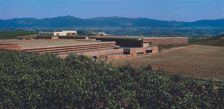 Bodegas Campo Viejo - Bodegas Juan Alcorta. La bodega: Bodegas de estilo minimalista de Ignacio Quemada Arquitectos