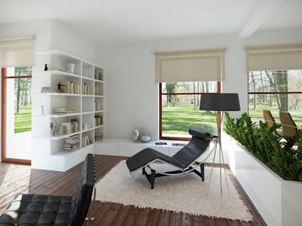 Wnętrze projektu Amelia: styl , w kategorii Salon zaprojektowany przez Biuro Projektów MTM Styl - domywstylu.pl