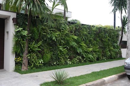 Jardines de estilo topical por HZ Paisagismo