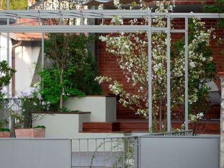 Terrazze: Giardino in stile in stile Moderno di Paola Thiella