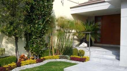 diseno de interiores jardines de estilo moderno por diseno de interiores y asesoria