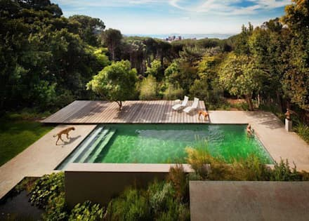 modern Pool by bandella arquitectura