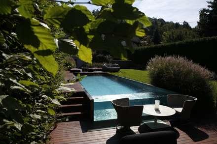 Pool im Wienerwald: moderner Pool von BEGRÜNDER