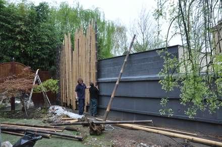 Palissade en bambou en construction pour jardin japonais: Jardin de style de style Asiatique par Taffin