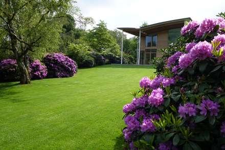 حديقة تنفيذ MK2 international landscape architects