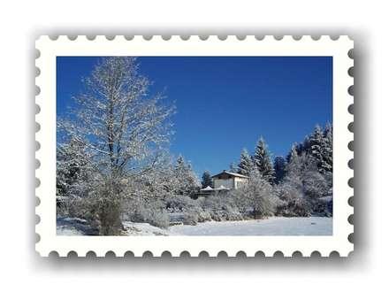 Cristalli di neve mattutina: Giardino d'inverno in stile in stile Rustico di immobiliare sublacense
