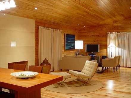Moradia no Cadaval: Salas de estar modernas por MIGUEL VISEU COELHO ARQUITECTOS ASSOCIADOS LDA