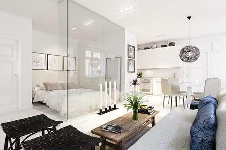 Квартира-студия в скандинавском стиле: Гостиная в . Автор – Eugene Chekhov