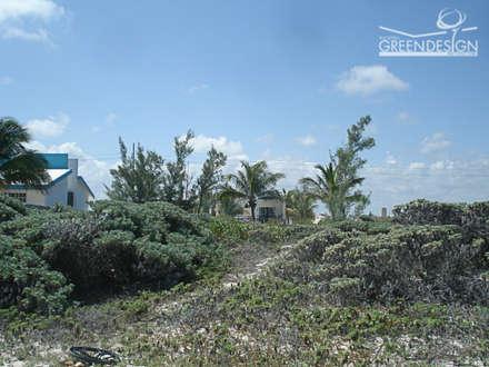Terreno natural: Jardines de estilo tropical de Yucatan Green Design