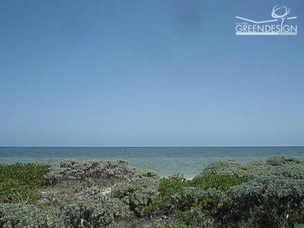 Duna costera: Jardines de estilo tropical de Yucatan Green Design