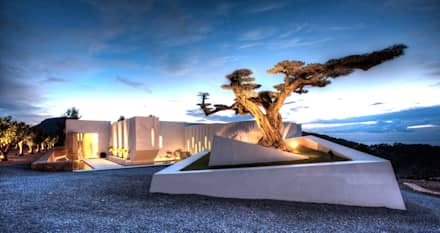 Casa Oasis: Jardines de estilo moderno de MG&AG.ARQUITECTOS