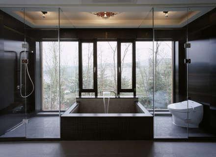 Z-House: 'Snow AIDe의  화장실