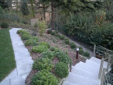 giardino privato, recupero sponda e terrazzo: Giardino in stile in stile Moderno di I Giardini di Anna