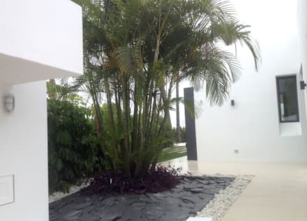 Jardin de la Luz: Jardines de estilo moderno de Beatrice Perlac - Adarve Jardines