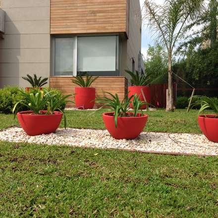 modern red jardines de estilo moderno por baires green
