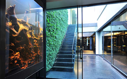 Feng Shui: asian Media room by Aquarium Architecture