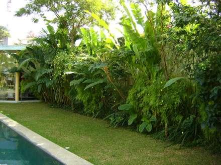 Perdizes - SP: Сады в . Автор – Eduardo Delphino Paisagismo