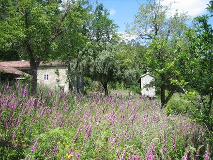 Rehabilitación de vivienda rural tradicional en Negreira - Brión: Jardines de estilo rural de Ezcurra e Ouzande arquitectura
