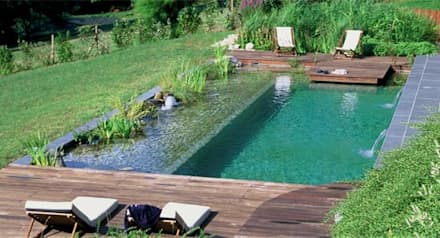 country Pool by arqs.insitu