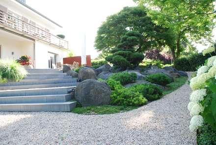 Kiesweg im asiatischen Garten: asiatischer Garten von dirlenbach - garten mit stil