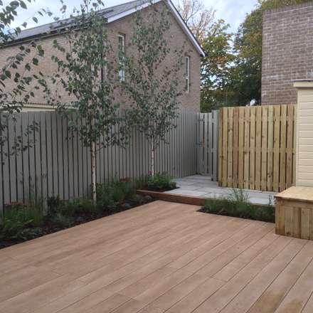 Small town garden: modern Garden by Andy Stedman Landscape & Garden Design