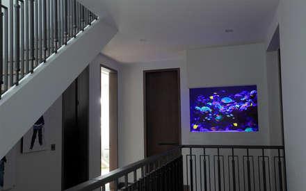 Toscana Residence:  Corridor & hallway by Aquarium Architecture