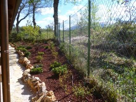 Scarpata in erosione, come renderla stabile e gradevole: Giardino in stile In stile Country di Studio Botanico Ventrone Dr. Fulvio