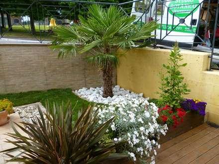 Villetta a schiera: Giardino in stile in stile Moderno di Studio Botanico Ventrone Dr. Fulvio