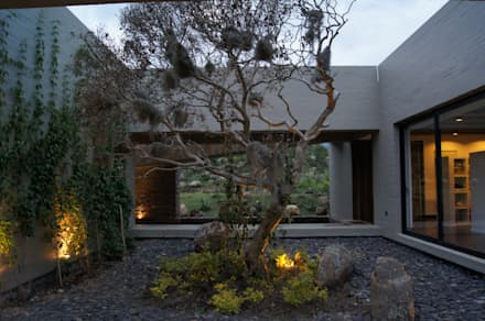 Casa IQ: Jardines de estilo moderno por AMR ARQUITECTOS
