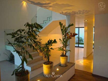 Macetera divisoria entre recibidor y sala: Pasillo, hall y escaleras de estilo  por Alfagrama estudio