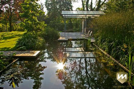 Moderne tuin met zwemvijver en poolhouse: industriële Tuin door Van Mierlo Tuinen | Exclusieve Tuinontwerpen