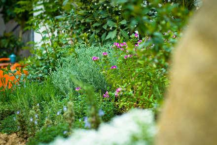 Jardín Rústico con toque chic en Extremadura: Jardines de invierno de estilo mediterráneo de Landscapers