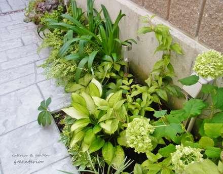 アイアンを使った門まわりとアプローチ、庭のリフォーム: 株式会社グリーンテリアが手掛けた庭です。