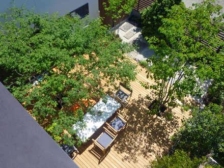 蕨市のコートハウス: 設計事務所アーキプレイスが手掛けた庭です。