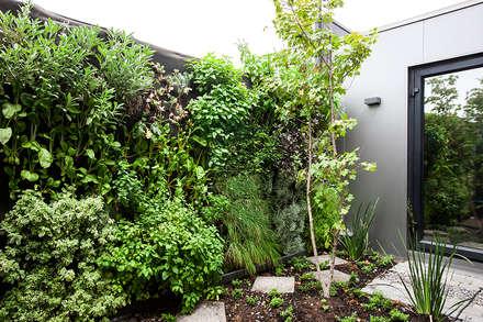 : Jardines de estilo moderno por VERDE360