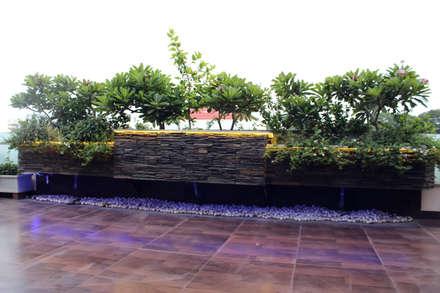 Duplex at Indore:  Terrace by Shadab Anwari & Associates.