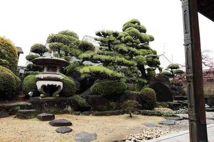 大阪府松原市の邸宅: 杉田造園 株式会社が手掛けた庭です。