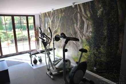 صالة الرياضة تنفيذ 4-style Studio Projektowe Anna Molin