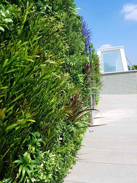 Artificial green wall:  Terrace by Paul Newman Landscapes