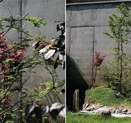 ADOSADO BARCELONA: Jardines de estilo clásico de Tinda´s Project S.L.