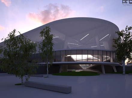 ESTÁDIO PALANCA NEGRA_ANGOLA_2012: Estádios  por PFS-arquitectura