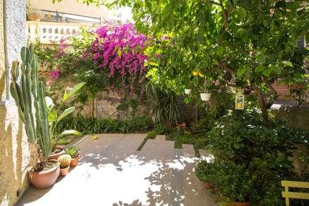 Giardino privato a Roma: Giardino in stile in stile Tropicale di MamBaOffice