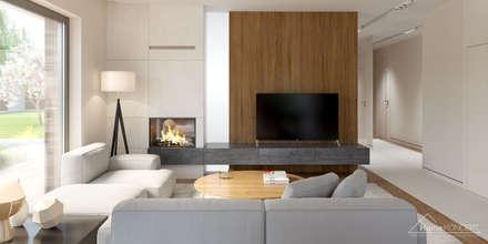 Aranżacja wnętrza domu HomeKONCEPT-36: styl , w kategorii Salon zaprojektowany przez HomeKONCEPT | Projekty Domów Nowoczesnych