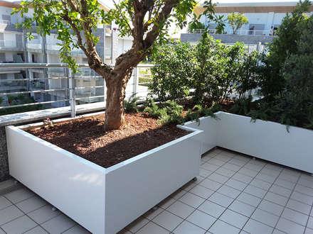 Nuova tecnologia per Fioriere verde pensile: Terrazza in stile  di Febo Garden landscape designers