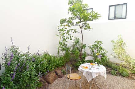สวน by Hábitas