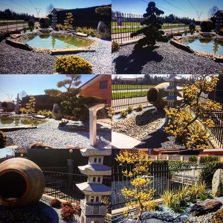 Realizzazioni giardini: Giardino in stile in stile Asiatico di Azienda agricola Vivai Romeo