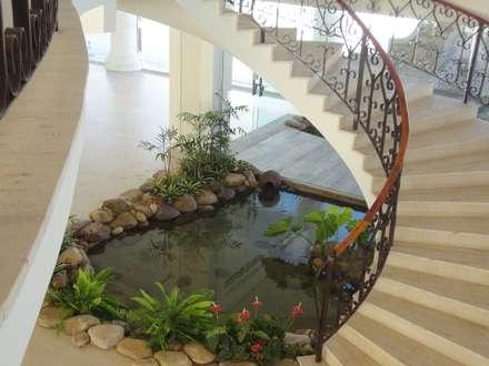 Giardino in stile in stile Tropicale di Agua Viva Lagos e Paisagismo
