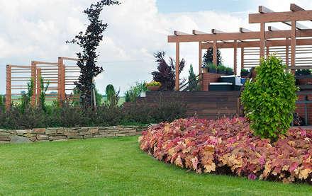 Ogród z pergolą na tarasie: styl , w kategorii Ogród zaprojektowany przez Pracownia Projektowa Architektury Krajobrazu Januszówka
