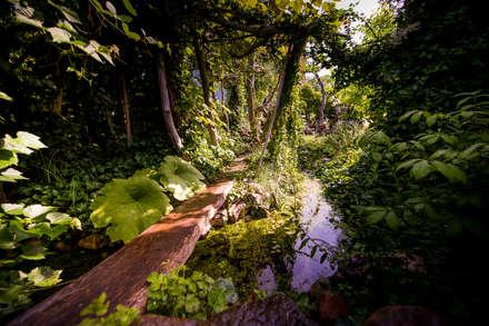 Wasser an allen Stellen des Gartens : tropischer Garten von Gartenarchitekturbüro Timm